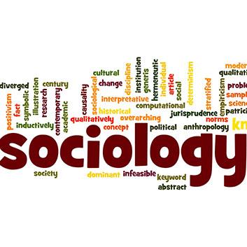 Sociology Minor